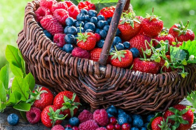 4 salades de fruits du matin - Cure-Naturali.it