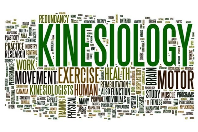 Kinesiologia: i benefici del Touch for Health